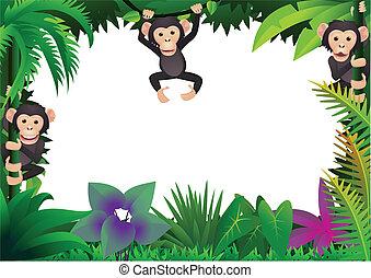 Lindo chimpancé en la jungla