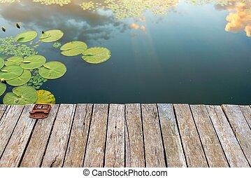 Lugar pacífico en el estanque