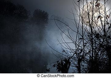 Luna llena sobre río húmedo