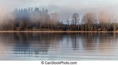 Misty bosque al otro lado del río