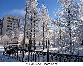 NADYM, RUSSIA - 15 de octubre de 2006: parque en Nadym, Rusia - 15 de octubre de 2006. El paisaje de invierno de la naturaleza.