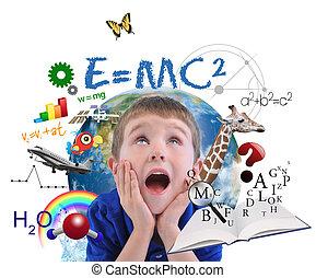 niño, blanco, educación, escuela, aprendizaje
