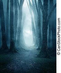 oscuridad, camino, bosque, brumoso