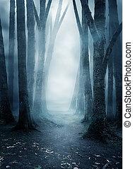 oscuridad, misterioso, bosque, brumoso