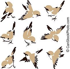 Pequeña ilustración de pájaro