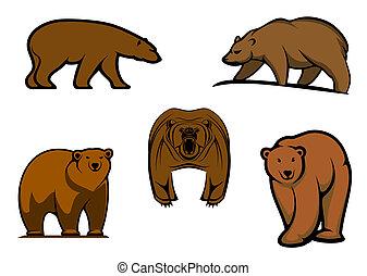 Personajes de osos salvajes marrones
