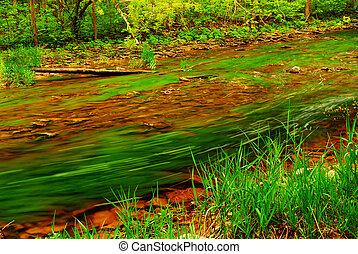 Río Bosque