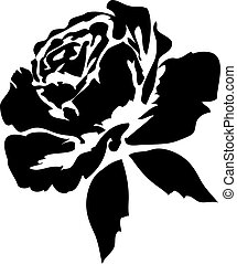 rosas, negro