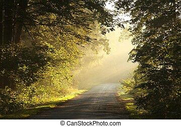 Rural Lane al amanecer