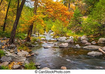 Sedona foliage en un día nublado de otoño