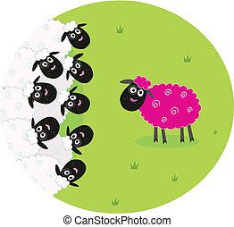 sheep, rosa, blanco