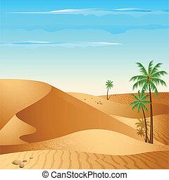 Solitario desierto
