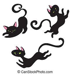 Tres gatos negros