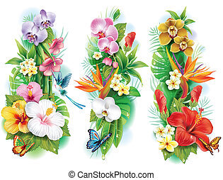 tropical, hojas, flores, arreglo