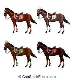 Un conjunto de caballos de diferentes trajes en diferentes municiones para saltar - silla, gorra, brida, soga, wagtrap, estampida. Sin jinete.