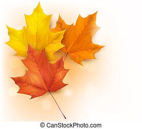 Un fondo de otoño con hojas