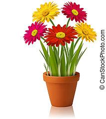 Un vector de flores de primavera