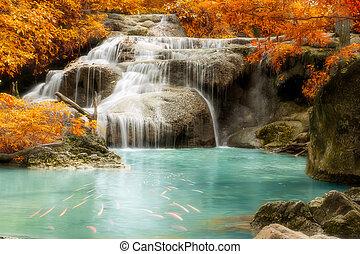 Una cascada en la selva tropical