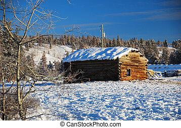 Una vieja cabaña