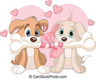 valentine, dos, perros