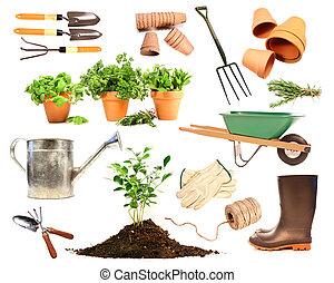 Variedad de objetos para plantar en blanco