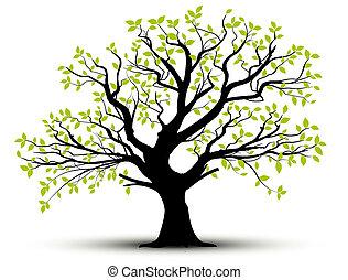 Vector, árbol de primavera y hojas
