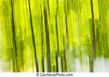 Verde bosque abstracto