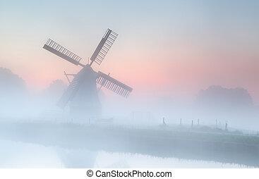 Viento en niebla densa al amanecer del verano